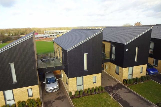 Thumbnail Link-detached house for sale in Sparrowhawk Way, New Hall, Harlow, Essex