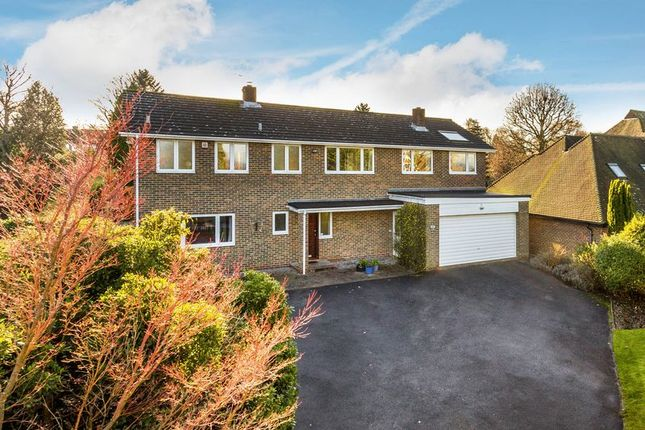 Thumbnail Detached house for sale in Downside Road, Guildford