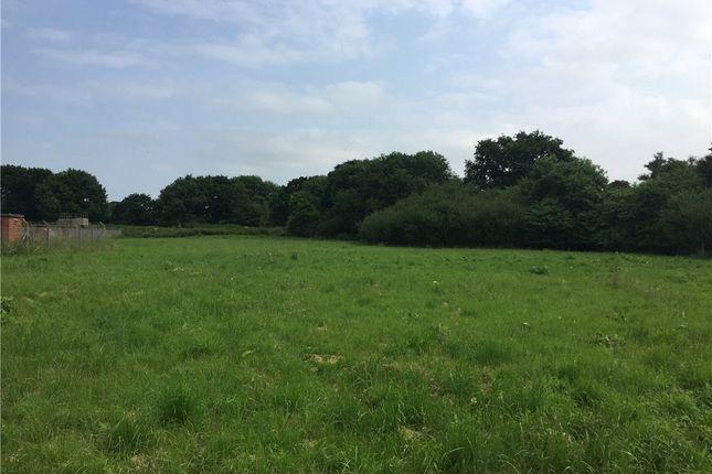 Thumbnail Land to rent in Coker Marsh, East Coker, Yeovil, Somerset