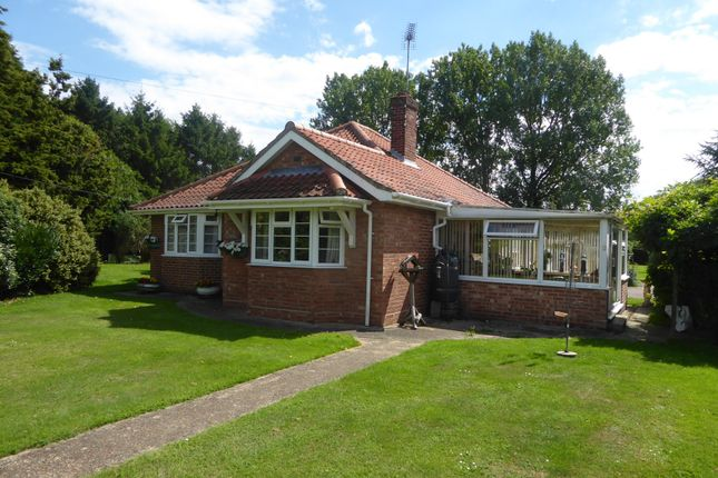 Thumbnail Detached bungalow for sale in Newlyn, 15 West End, Geldeston, Beccles, 0Lt