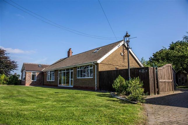 Thumbnail Detached bungalow for sale in Skirlaugh Road, Old Ellerby, East Yorkshire