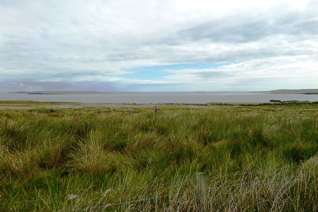 Thumbnail Land for sale in Gills, By Thurso