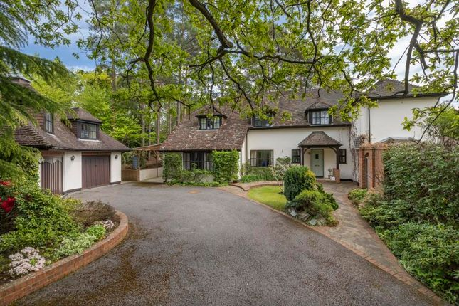 Thumbnail Detached house for sale in St. Marys Road, Ascot