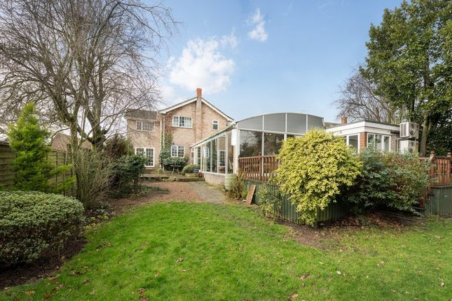 Thumbnail Detached house for sale in Shelfanger Road, Diss