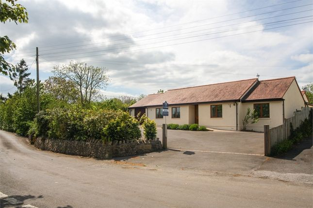 Thumbnail Detached bungalow for sale in Brooklyn, Sand Road, Wedmore, Somerset