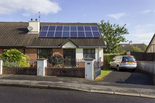 Thumbnail Semi-detached bungalow for sale in The Meadows, Londonderry