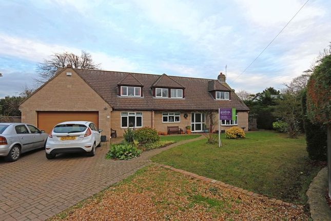 Thumbnail Detached house to rent in The Retreat, Easton On The Hill, Stamford