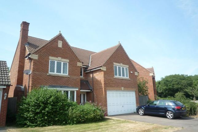 Thumbnail Detached house to rent in Cotswolds Way, Calvert, Buckingham