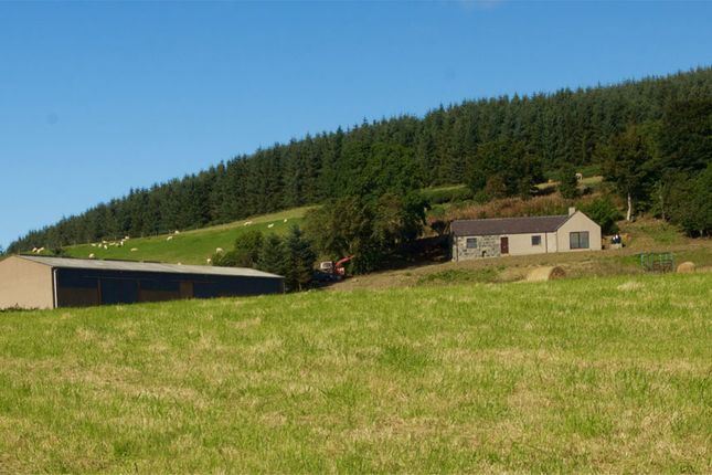Thumbnail Farm for sale in Gartly, Huntly