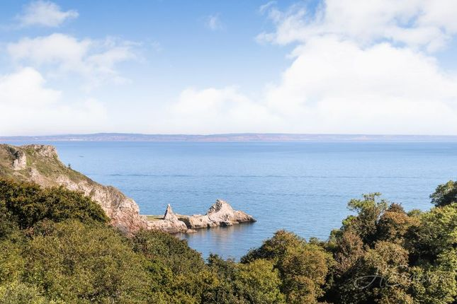 Thumbnail Flat for sale in Asheldon Road, Torquay