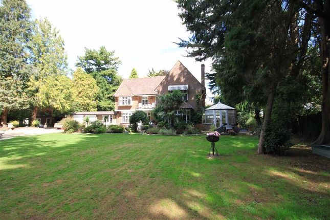 Thumbnail Detached house for sale in Woodland Walk, Ferndown