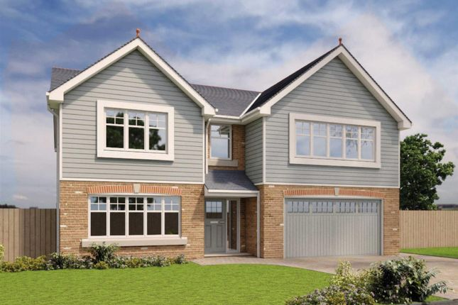 Thumbnail Detached house for sale in The Berkley, Phase 2, Royal Park, Ramsey