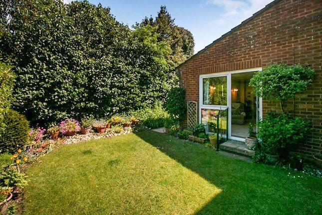 Thumbnail Property for sale in Salisbury Road, Fordingbridge