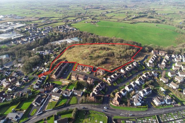 Thumbnail Commercial property for sale in Lands At Westland Road South, Cookstown, County Tyrone