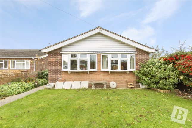 Thumbnail Detached bungalow for sale in Hearsall Avenue, Chelmsford, Essex