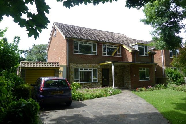 Thumbnail Detached house for sale in Lanthorne Road, Broadstairs