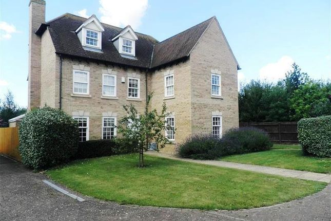 Thumbnail Property to rent in Meadowsweet Close, Lower Cambourne, Cambridge