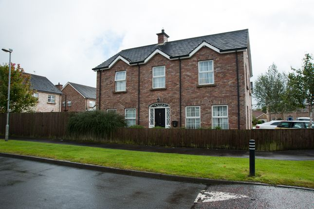 Thumbnail Detached house for sale in Millbrooke Manor, Ballymoney