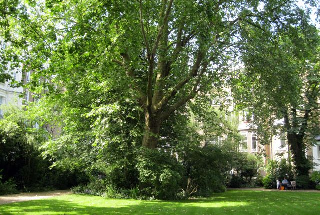 Thumbnail Terraced house to rent in Stanley Crescent, Notting Hill Gate