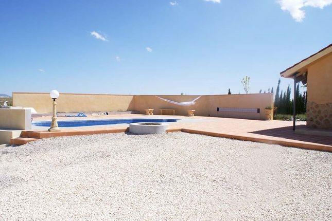 Image12 of Pinoso, Alicante, Spain