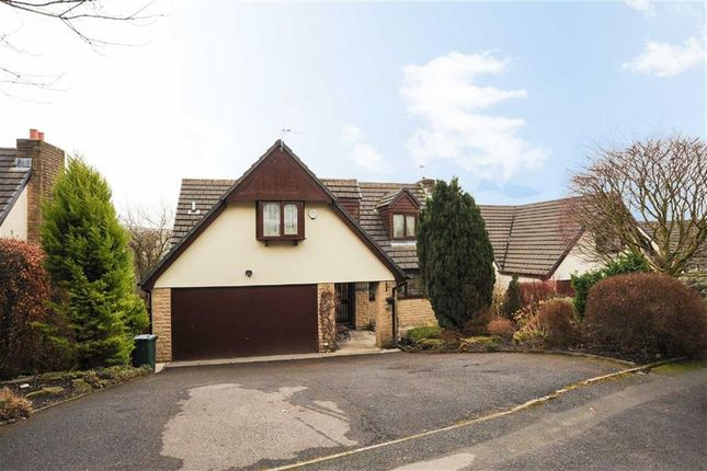 Thumbnail Detached house for sale in Lower Cribden Avenue, Rawtenstall, Lancashire