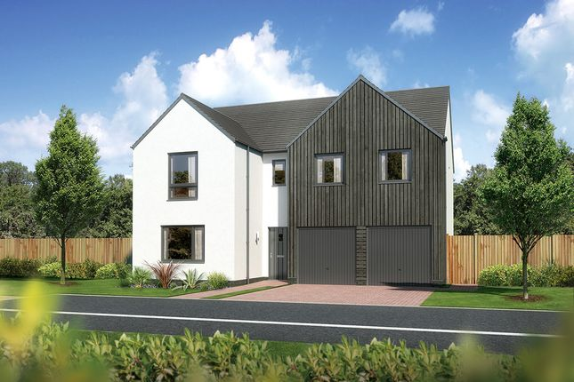 "Thumbnail Detached house for sale in ""Malborough"" at Carron Den Road, Stonehaven"