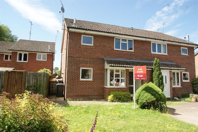 Thumbnail Semi-detached house to rent in Hartley Meadows, Whitchurch