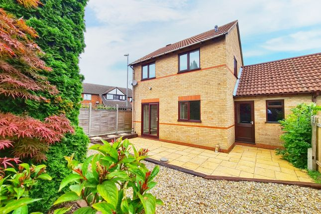Thumbnail Detached house for sale in Birchvale Court, Desborough, Kettering