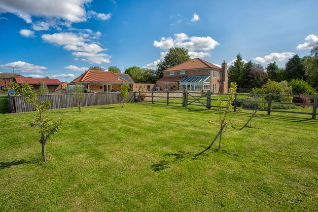 Thumbnail Detached house for sale in School Road, Tilney St. Lawrence, King's Lynn