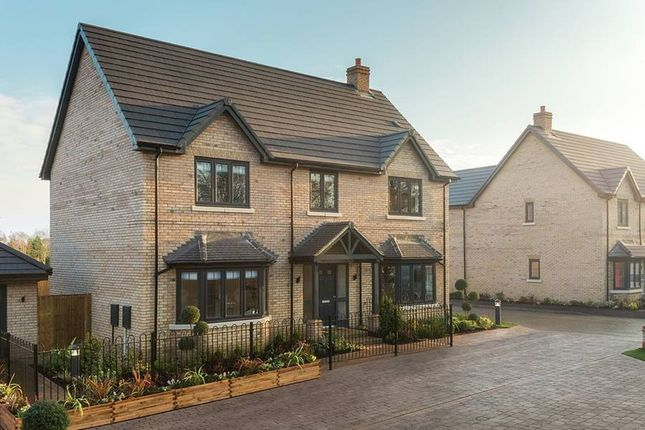 """Thumbnail Property for sale in """"The Taymore Showhome"""" at Badger Way, Brampton, Huntingdon"""