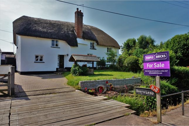 Thumbnail Cottage for sale in West Town, Exeter
