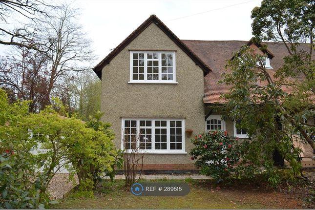 Thumbnail Semi-detached house to rent in Pine Garth, Fleet