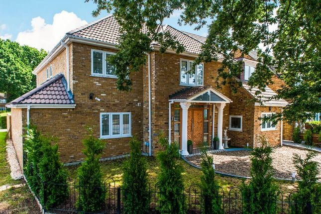 Thumbnail Detached house to rent in Hatch Lane, Windsor