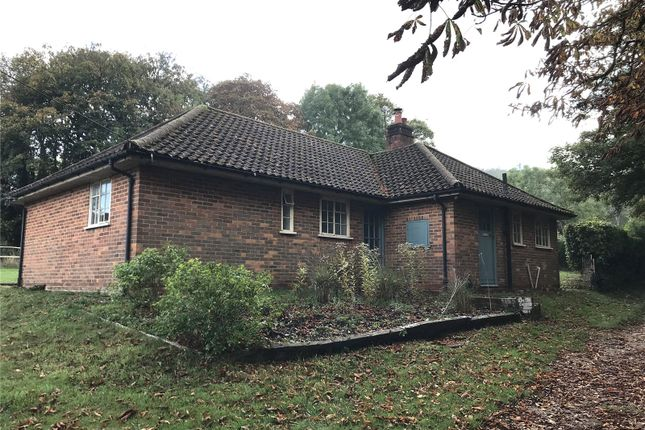 Thumbnail Bungalow to rent in Coombe Place, Offham, Lewes