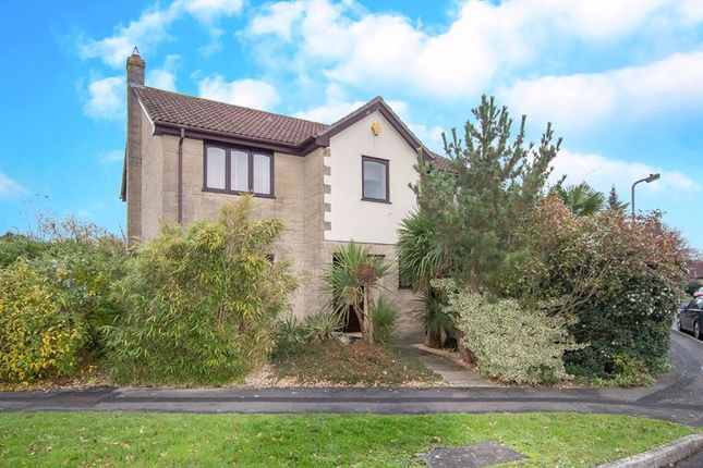 Thumbnail Detached house for sale in Blagdon Walk, Frome