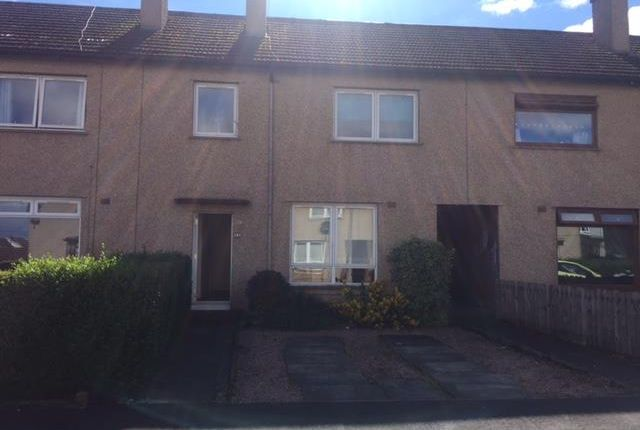 Thumbnail Terraced house to rent in Glenbervie Drive, Larbert