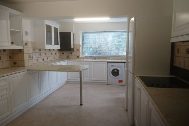 Thumbnail Shared accommodation to rent in Malvern Road, Cherry Hinton
