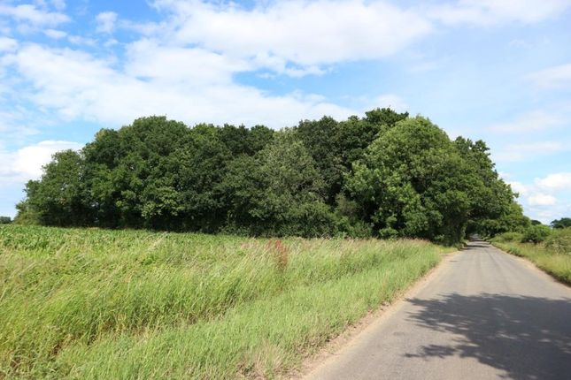 Thumbnail Land for sale in Woodland, Reymerston Hall, Reymerston, Norfolk