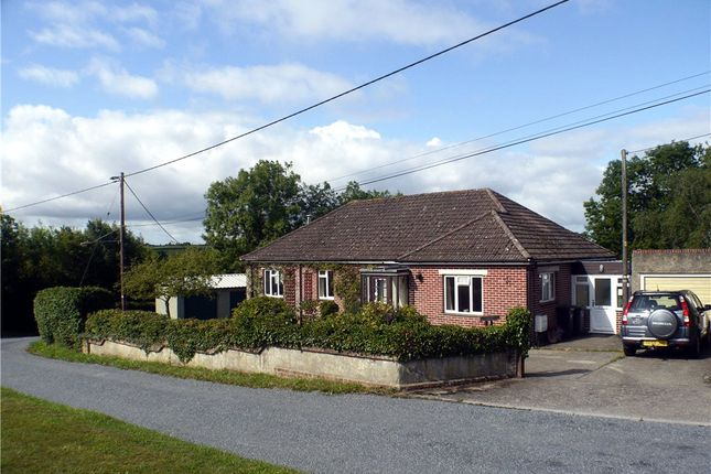 Thumbnail Detached bungalow for sale in Broad Oak, Sturminster Newton, Dorset
