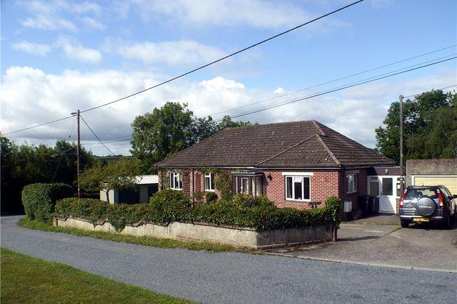 Thumbnail Detached bungalow for sale in Broad Oak, Sturminster Newton, Dorset