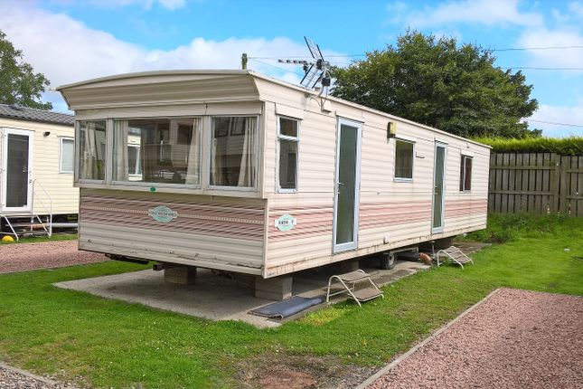 Thumbnail Lodge for sale in St Cyrus, Montrose