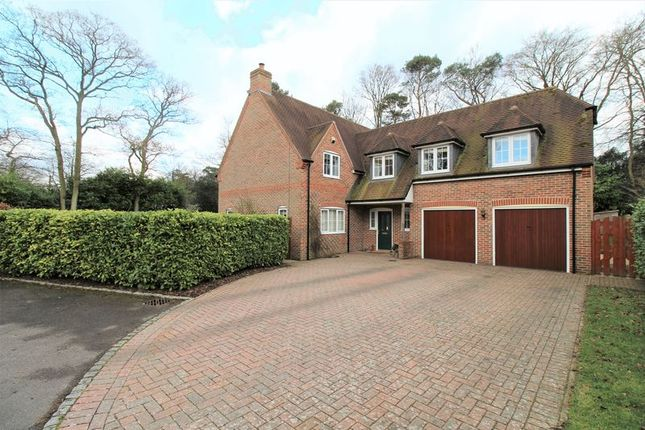 Thumbnail Detached house for sale in Winfield Drive, Newbury