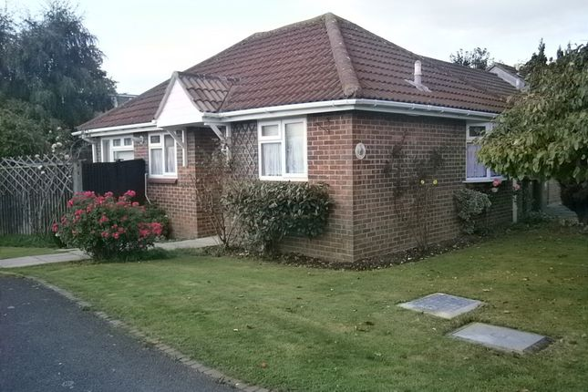 Thumbnail Terraced bungalow for sale in Curlew Drive, Fareham