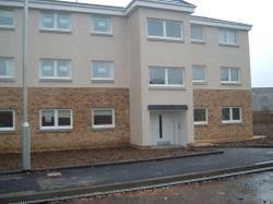 Thumbnail Flat to rent in Sanderling, Lesmahagow, Lanark