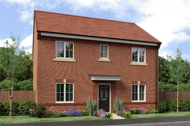 "Thumbnail Detached house for sale in ""The Buchan"" at Sadberge Road, Middleton St. George, Darlington"