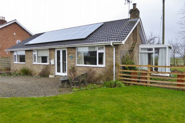 Thumbnail Detached bungalow for sale in Overton, York