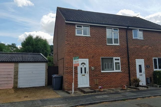 Thumbnail Semi-detached house to rent in Coopers Road, Martlesham Heath, Ipswich