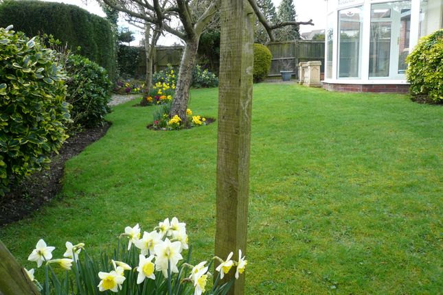 ... Rear Garden Of St Edmunds Green, Sedgefield TS21 ...