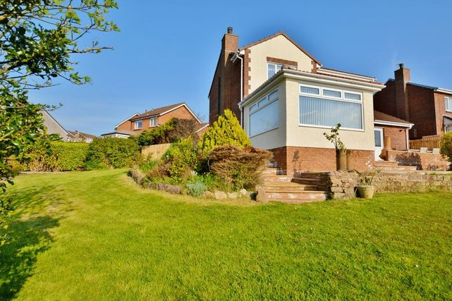 Thumbnail Detached house for sale in Juniper Grove, Whitehaven