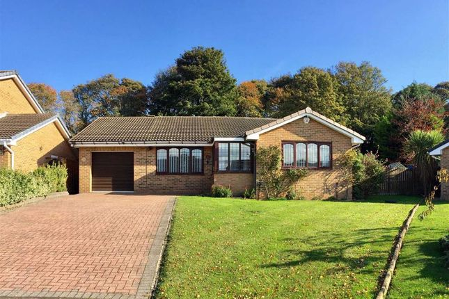 Thumbnail Detached bungalow for sale in Brandling Court, South Shields
